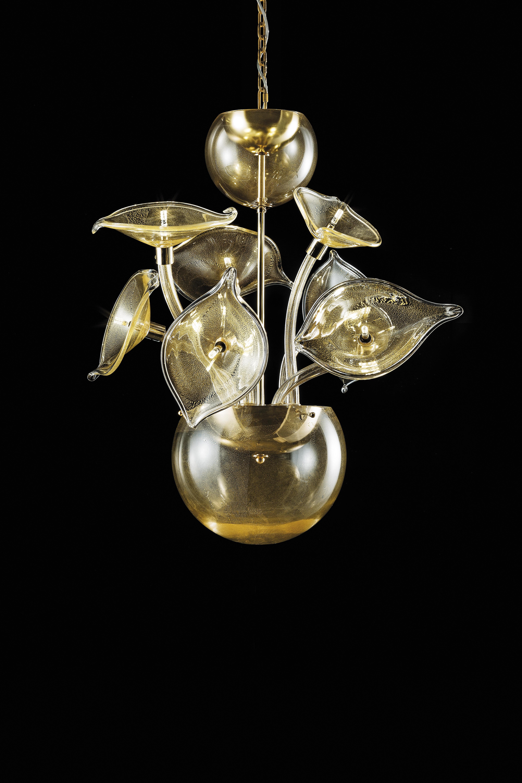 Hibiscus-7 oro